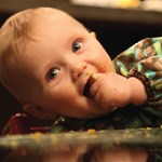Traditional, or Baby Lead Weaning?